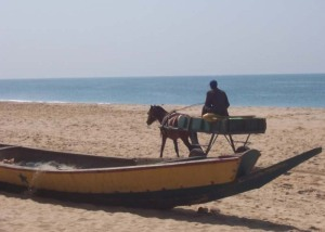 Horse cart on the beach at Popenguine, Senegal